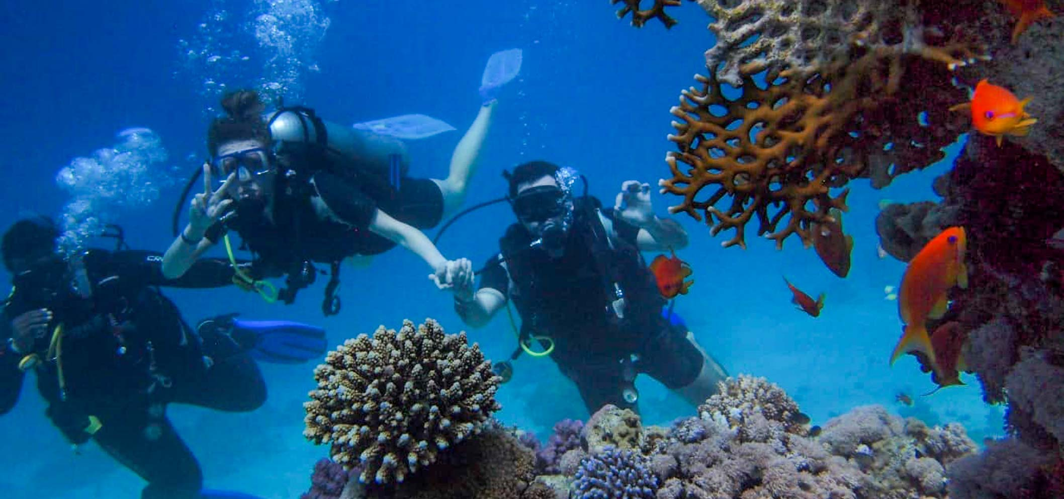 Los Cabos: Otherworldly Underwater Adventures